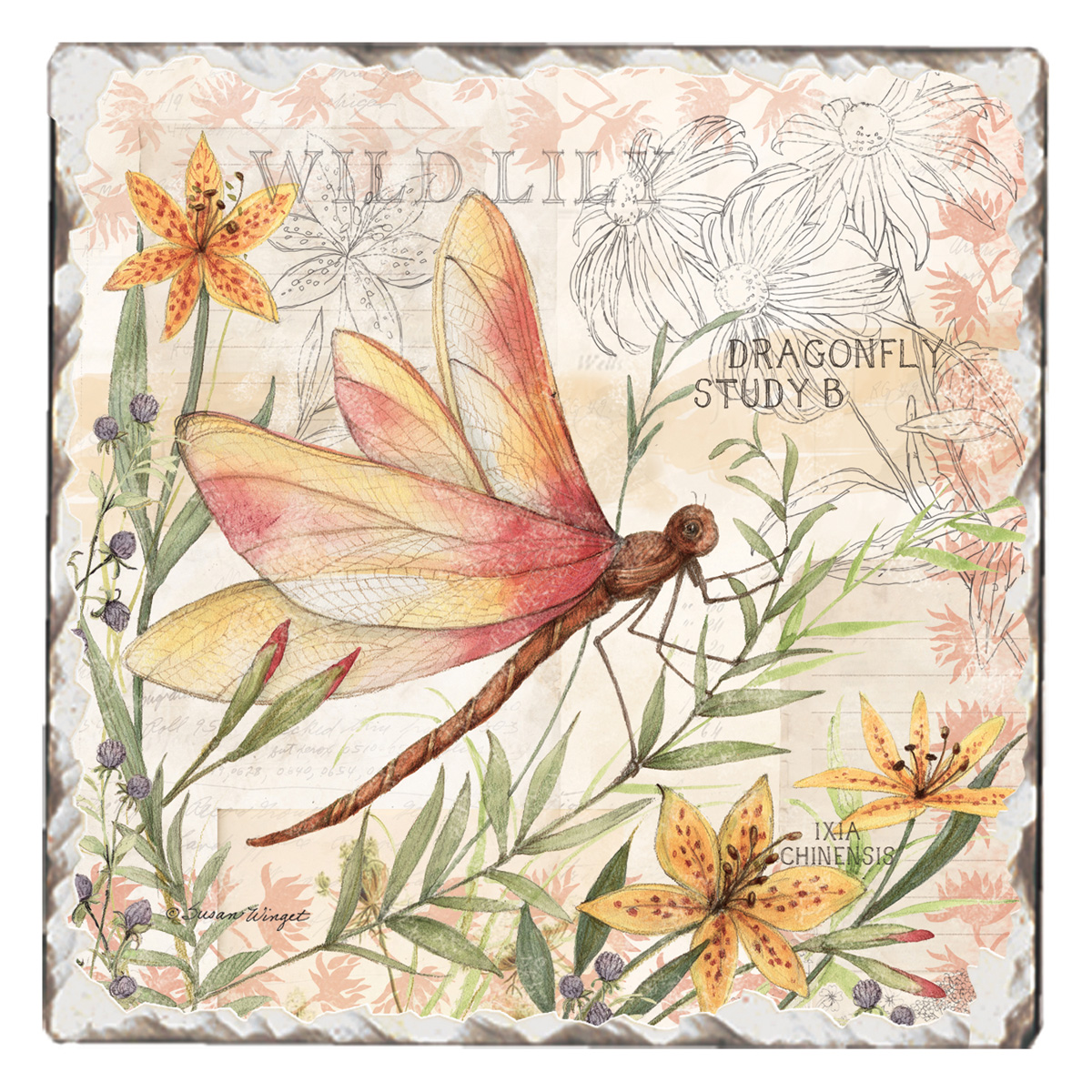 Single Tile Coaster Dragonfly Study Conimar Group